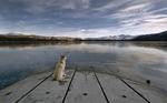 Акита-ину на озере