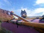 Аляскинский кли-кай в лодке