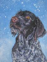 Нарисованная собака дратхаар