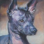 Нарисованная мексиканская голая собака