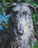 Портрет шотландского дирхаунда