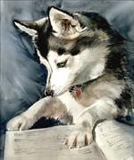 Нарисованный аляскинский кли-кай